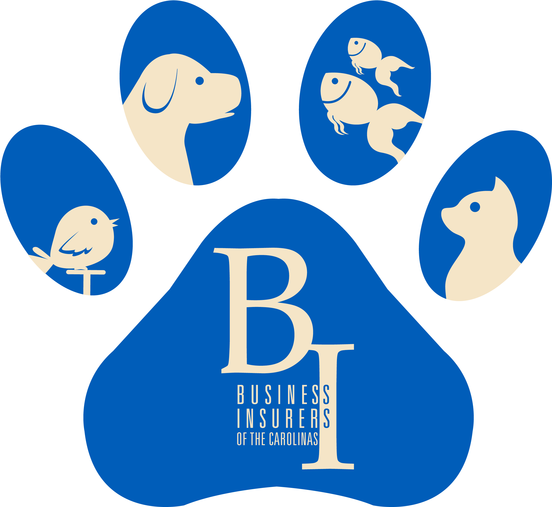 BI Certification